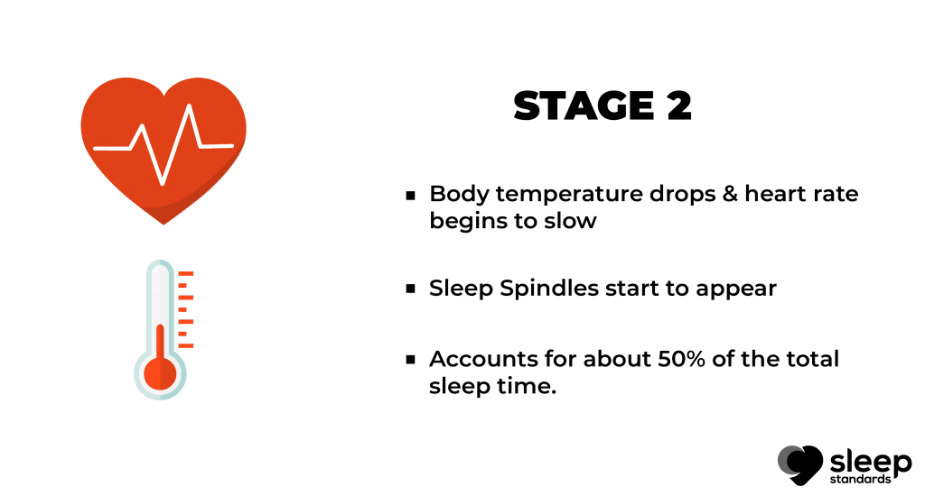 Stages of sleep | Bullet points explain stage 2 in stage of sleep