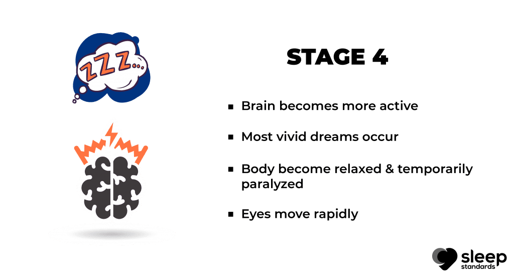 Stages of sleep | Bullet points explain stage 4 in stage of sleep