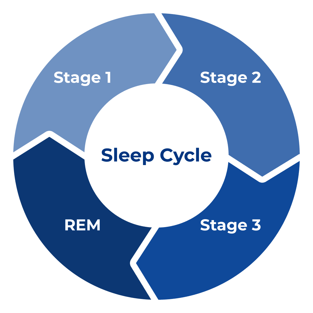 Sleep Cycle | Sleep Standards