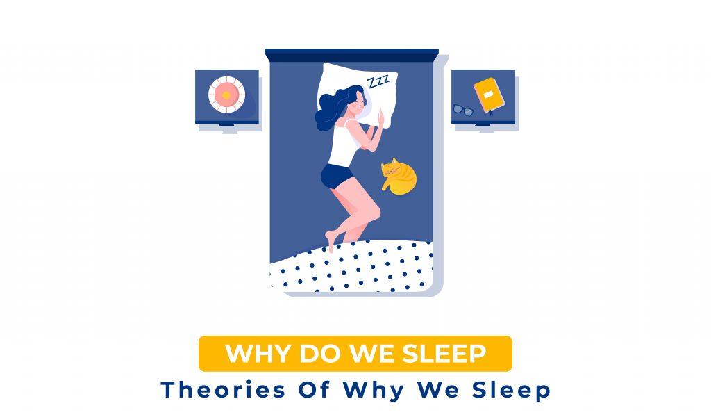 Why Do We Sleep - Sleep Standards